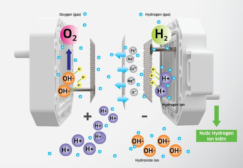 Cách các chuyên gia lựa chọn mua máy lọc nước ion kiềm